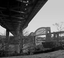 Two Bridges by Wayne Holman