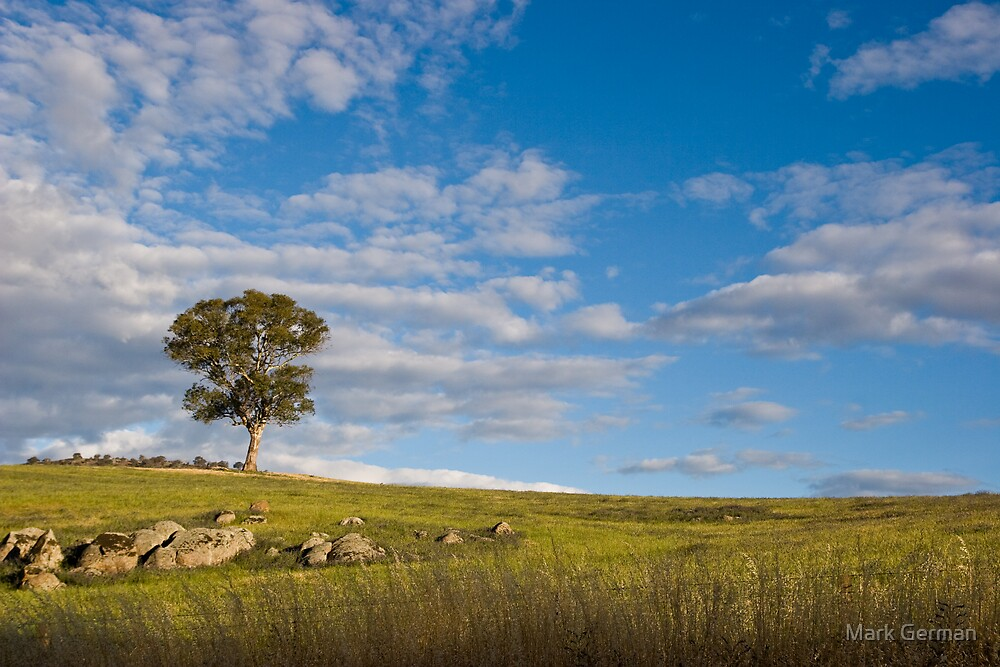 Peace in the Pasture by Mark German
