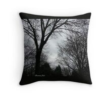 Sandy ~ The Frankenstorm Throw Pillow