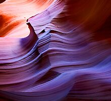 Desert Waves by DawsonImages