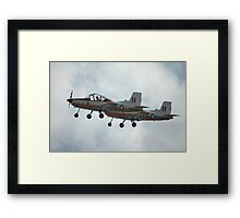 A Pair Of Plastic Parrots - ex-RAAF CT4 Airtrainers Framed Print