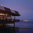 Waterfront Restaurant by gratephich