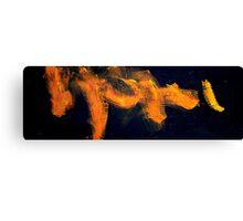 flames of orange Canvas Print