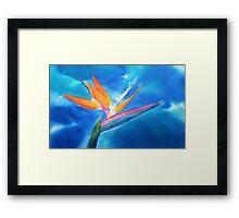 The new leaf Framed Print