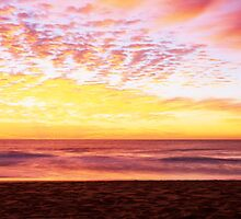 Palm Beach, Northern Beaches by Matt  Lauder