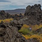 Exploring Iceland's Rugged Topography in Autumn by Gerda Grice