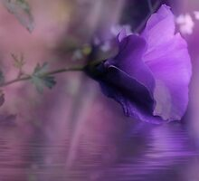 Dreaming in Purple by Elaine Teague