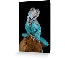 Blue Iguana Greeting Card