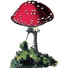 antique typographic vintage mushroom toadstool by surgedesigns