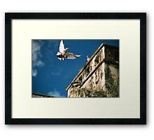 Flaps away! Framed Print