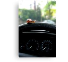 Driving in the slow lane Canvas Print