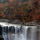 Cumberland Falls by Scarlett
