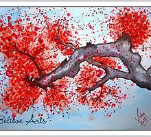 Cherry blossoms by Saby Walia