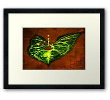 Leaf Droplet 01 Framed Print