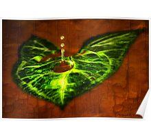 Leaf Droplet 01 Poster