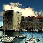 Dubrovnik harbour  by alloverglad