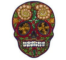 Winter skull holly king, red by Vicky Stonebridge