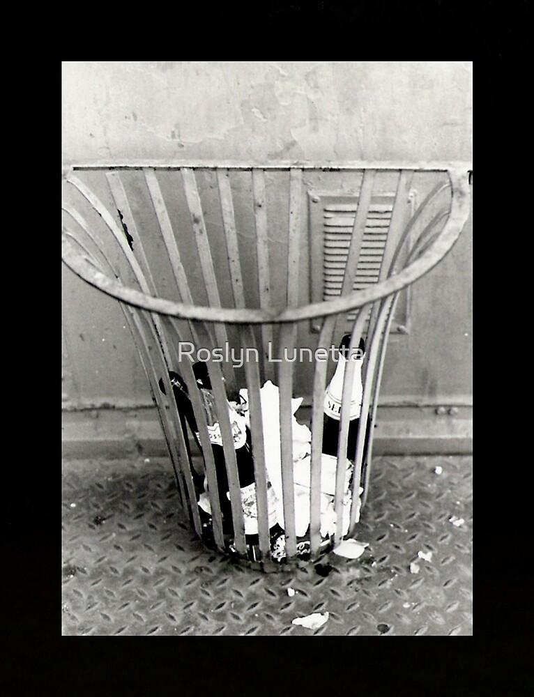 garbage by Roslyn Lunetta