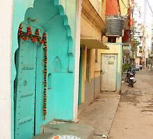 Street in Delhi by Lydia Cafarella