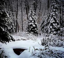 The Winter garden by Gisele Bedard