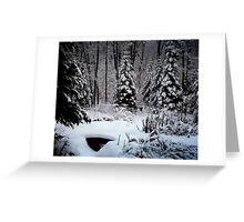 The Winter garden Greeting Card