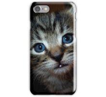 Tig the kitten iPhone Case/Skin
