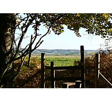 VIEW OVER  THE STILE Photographic Print