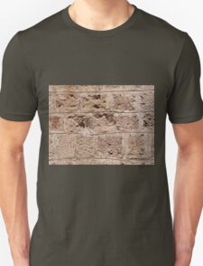 Old stone wall T-Shirt