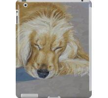 Sleeping Pet iPad Case/Skin