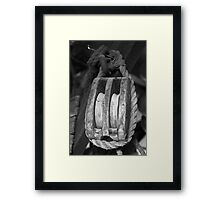 learned the ropes Framed Print