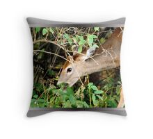 I'm So Hungry! (card) Throw Pillow