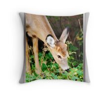 My First Antlers Are Almost Here! (card) Throw Pillow