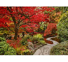 Japanese Garden in Butchart Gardens, BC, CANADA Photographic Print
