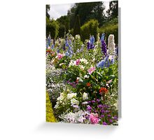 Flowers in Versailles Greeting Card