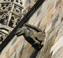 13th Century Gargoyle - Barri Gòtic  by creativetravler
