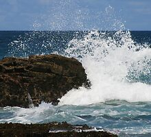 the rock by britt williams