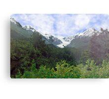 Two Glaciers Metal Print