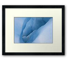 Ice Sculpture Framed Print