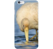 Yellow-billed Spoonbill iPhone Case/Skin