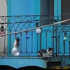 La Boca Buenos Aires by Bettina Kaiser