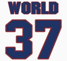Basketball player Metta World jersey 37 by imsport