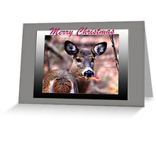 Merry Christmas (holiday card) Greeting Card