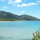 Cape Tribulation North Queensland by Peter Walters