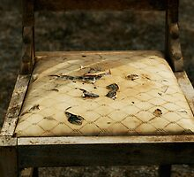 Ripped Chair by Stephen Mitchell