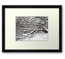 SNOW SCENE 2 Framed Print