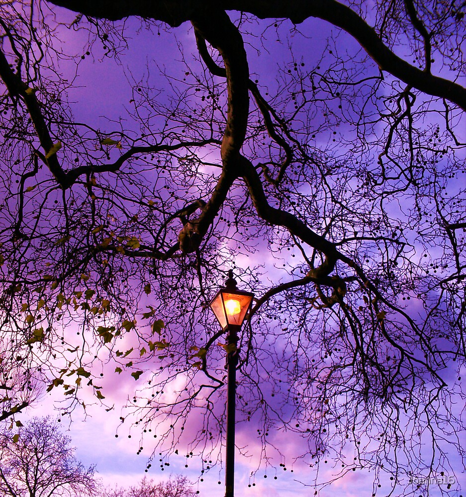 Tree Light by Joanna Jeffrees