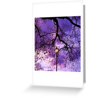 Tree Light Greeting Card