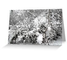 SNOW SCENE 4 Greeting Card
