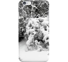 SNOW SCENE 1 iPhone Case/Skin