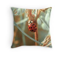 LadyBug and Fennel Throw Pillow